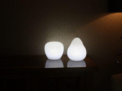 LED Apple & Pear lights