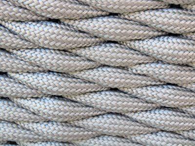 Serpent detail