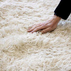 LONGI_carpet