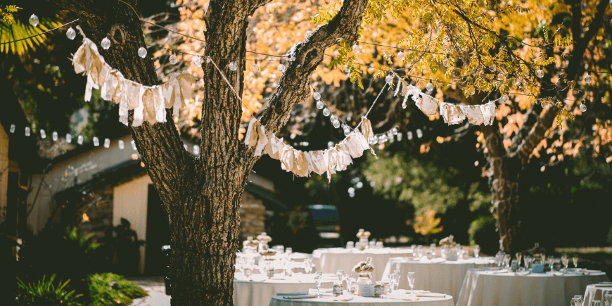 garden party with banners in trees
